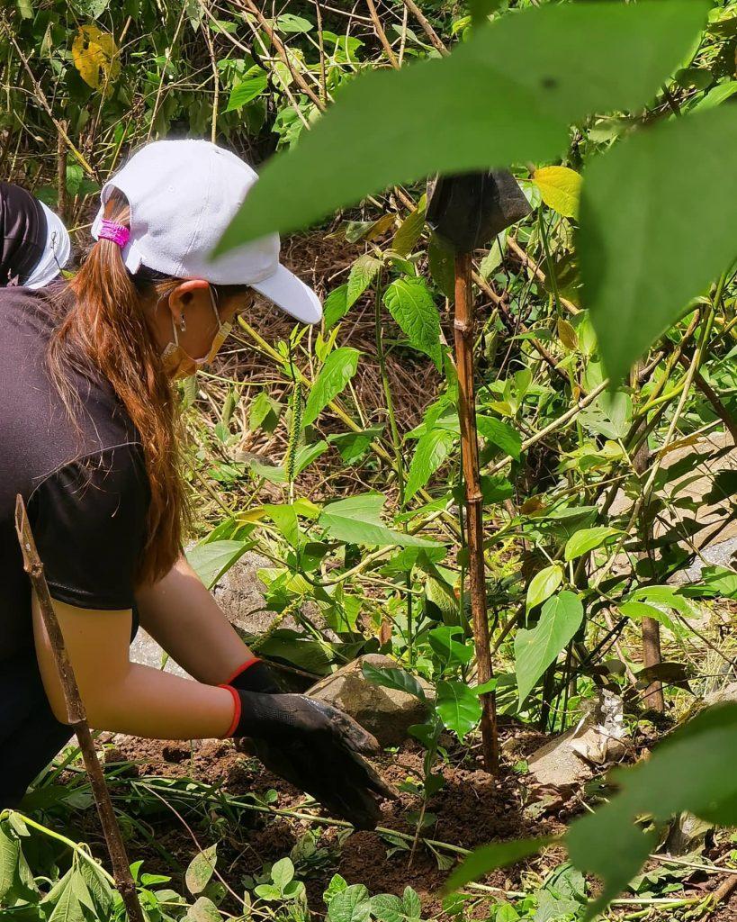 JHMC Plants 800 Arabica Coffee Seedlings in Observance of Arbor Day